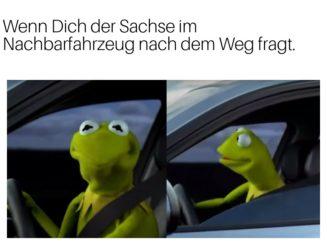 Sachse Rostock